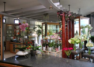 florgarden nadal godega treviso negozio fioreria 4