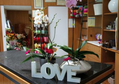 florgarden nadal godega treviso negozio fioreria love