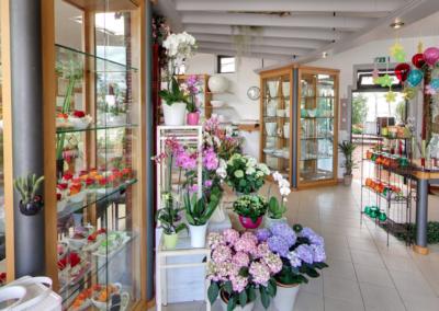 florgarden nadal godega treviso negozio fioreria vetrina